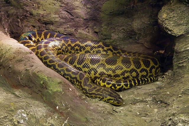 had na skále