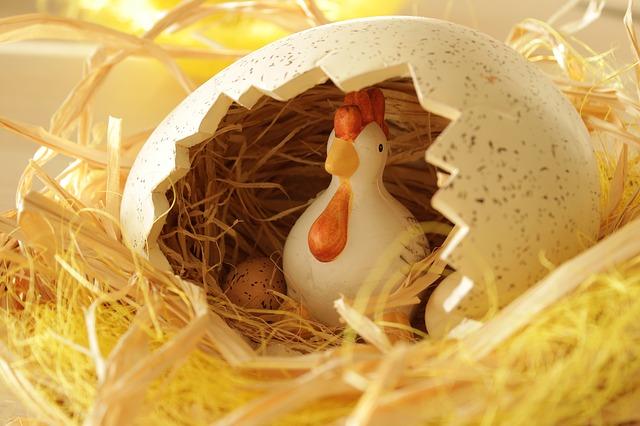 hnízdečko ve vajíčku